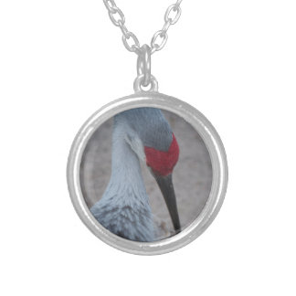 Closeup of the face of a Sand Hill Crane Silver Plated Necklace