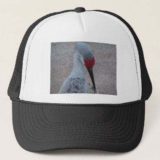 Closeup of the face of a Sand Hill Crane Trucker Hat