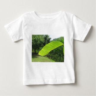 Closeup of walnut leaf lit by sunlight baby T-Shirt