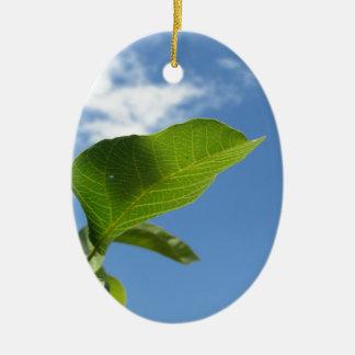 Closeup of walnut leaf lit by sunlight ceramic ornament