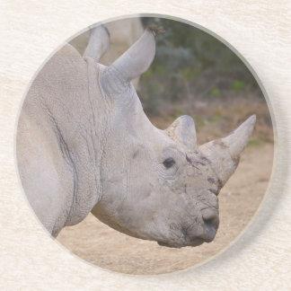 Closeup of white rhinoceros beverage coaster