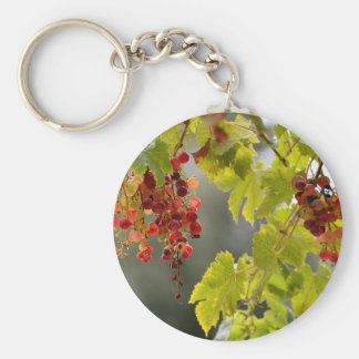 Closeup red grapes among leaves basic round button keychain