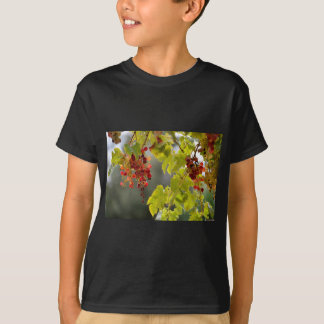 Closeup red grapes among leaves T-Shirt