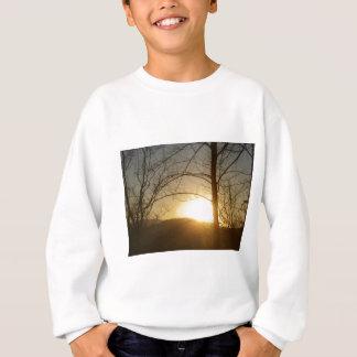 Clothing Sweatshirt
