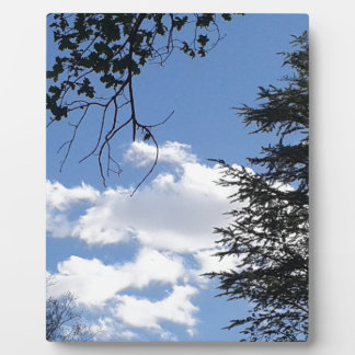 Cloud And Trees Plaque