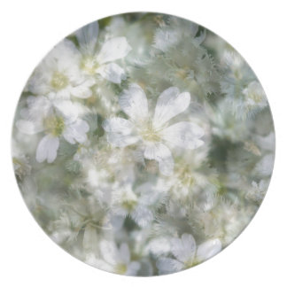 Cloud of White Flowers Plate