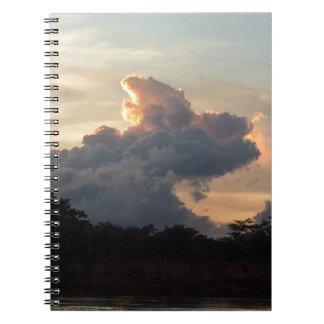 Cloud Shark Notebooks