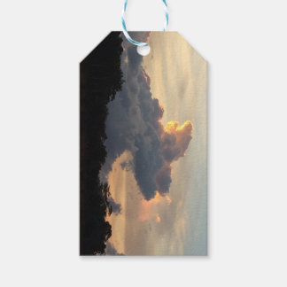 Cloud Shark Pack Of Gift Tags