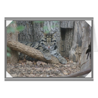 CLOUDED LEOPARD SUPERIOR CAMOUFLAGE CARD