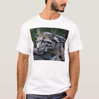Clouded Leopard T-Shirt