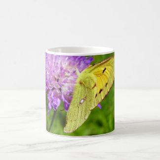 Clouded Yellow Butterfly Bug Mug