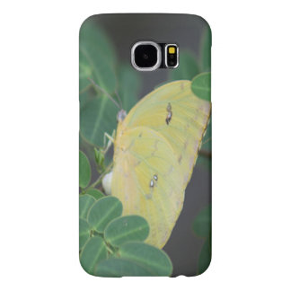 Clouded Yellow Butterfly Samsung Galaxy S6 Cases