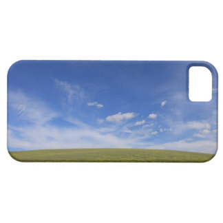Clouds and Lawn, Tuscany, Italy iPhone 5 Cases