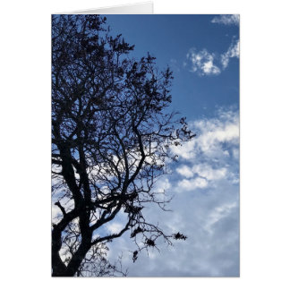 Clouds Blue Sky Tree Silhouette Greeting Card