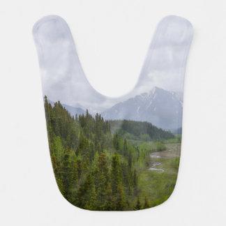 Cloudy At Denali Bib