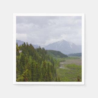 Cloudy At Denali Disposable Napkin