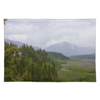 Cloudy At Denali Placemat