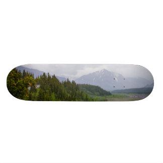 Cloudy At Denali Skateboard