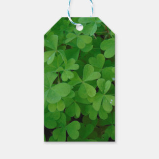 Clover Gift Tags