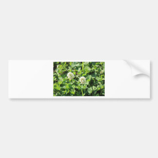 Clovers and Flowers Bumper Sticker