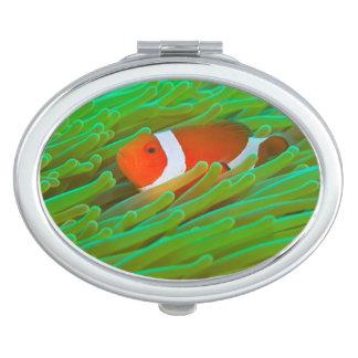 Clown Anemonefish Compact Mirror