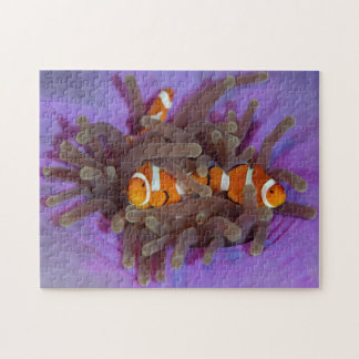 Clown Anemonefish Puzzle