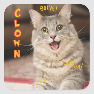Clown Cat Square Sticker