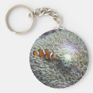 clown fish 3 keychain