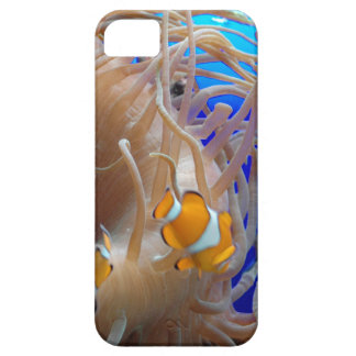 Clown Fish Darting Among The Stinging Tentacles Case For The iPhone 5