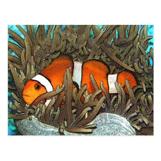 Clown Fish Design Postcard