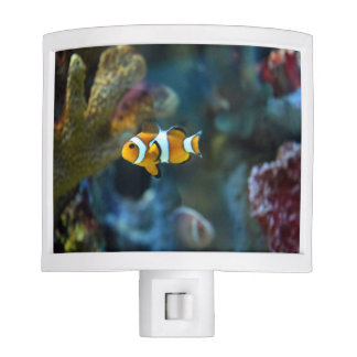 Clown Fish Night Lites