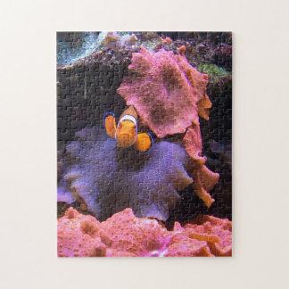 Clown fish puzzle
