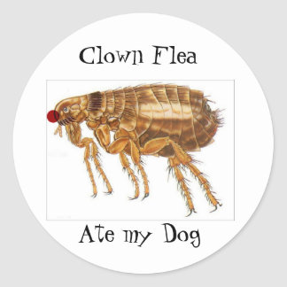 Clown Flea stickers