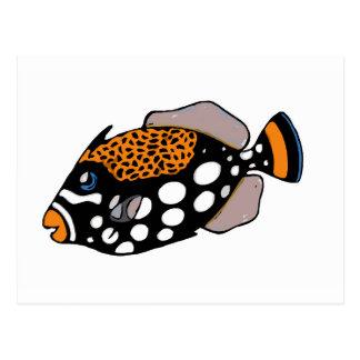 Clown Triggerfish Postcard