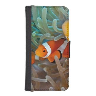 Clownfish iPhone 5 Wallets