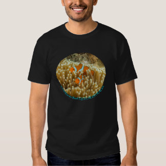 Clownfish on the Great Barrier Reef Shirts