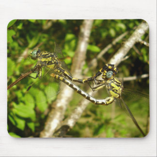 Club-tailed Dragonflies Mating Mouse Mat Mouse Pad