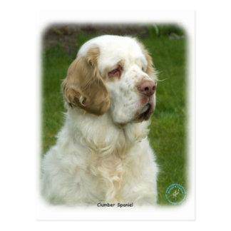 Clumber Spaniel 9Y003D-101 Postcard
