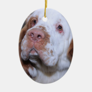 CLUMBER SPANIEL ORNAMENT