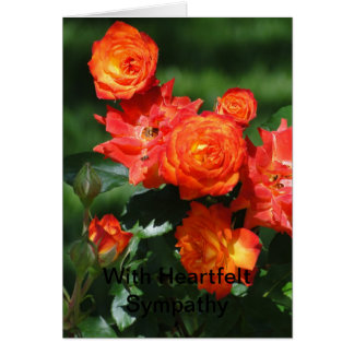 Cluster Of Orange Roses, Sympathy Card