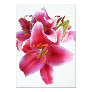 "Cluster of Stargazer Lilies 5"" X 7"" Invitation Card"