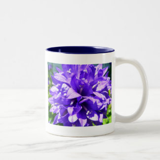 Clustered Bellflower (Campanula glomerata Superba) Two-Tone Coffee Mug