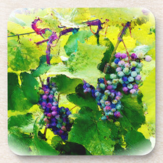 clusters of grapes 17 coaster