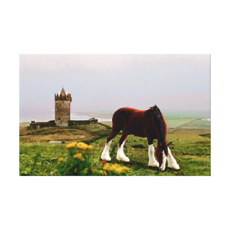 Clydesdale Castle Canvas Print