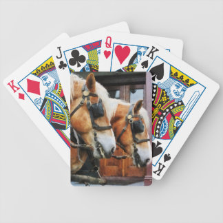 Clydesdale Closeup Bicycle Playing Cards
