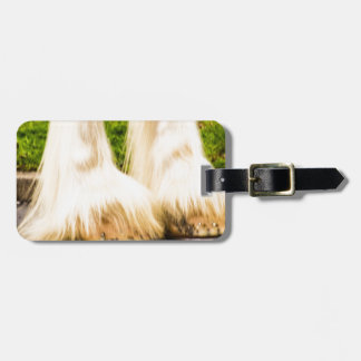Clydesdale Feet Luggage Tag