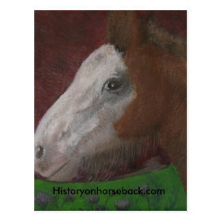 "Clydesdale foal: ""Mother's Side"" Post Cards"