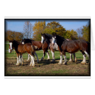 clydesdale group card