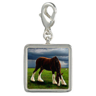 Clydesdale Storm Charm