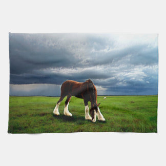 Clydesdale Storm Kitchen Towel